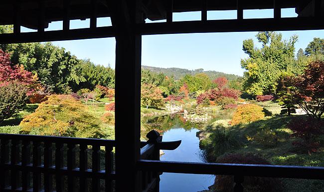 bambouseraie jardin japonais